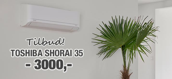 2018-april-toshiba-shorai-35-kampanje-715x330